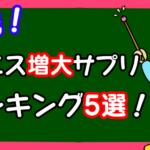 実践!ペニス増大サプリのおすすめランキング5選【2019年版】